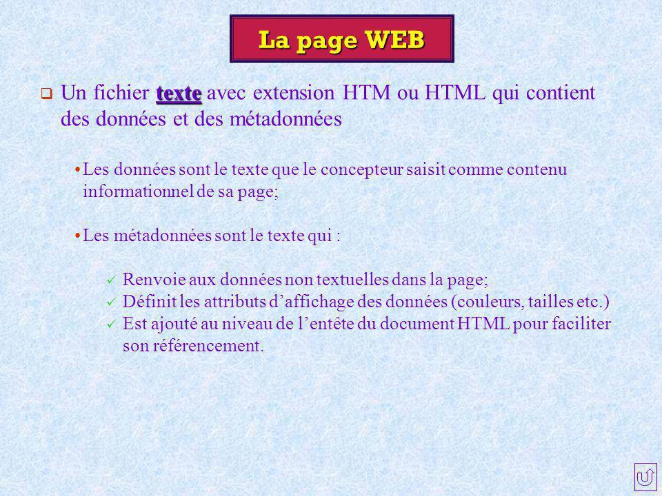 La page WEB Un fichier texte avec extension HTM ou HTML qui contient des données et des métadonnées.