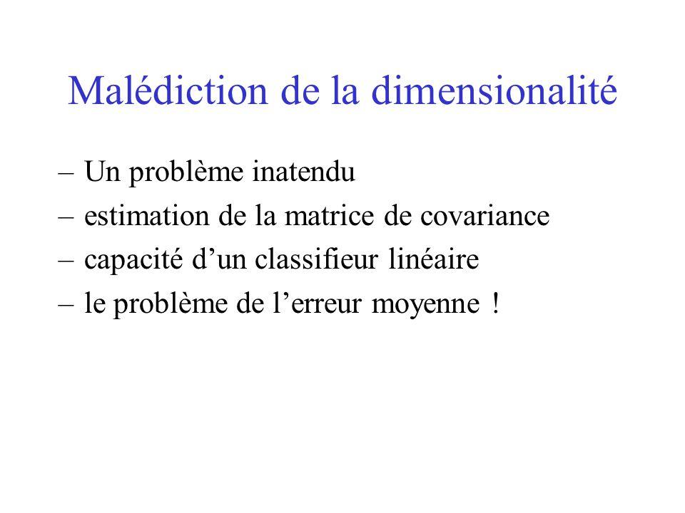 Malédiction de la dimensionalité