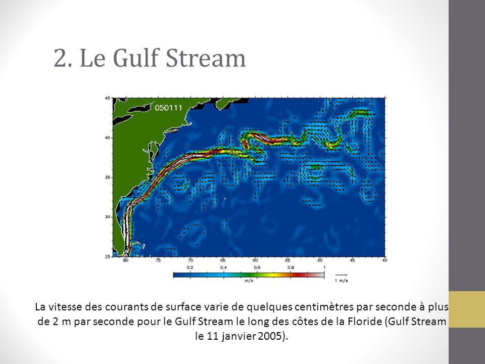 2. Le Gulf Stream