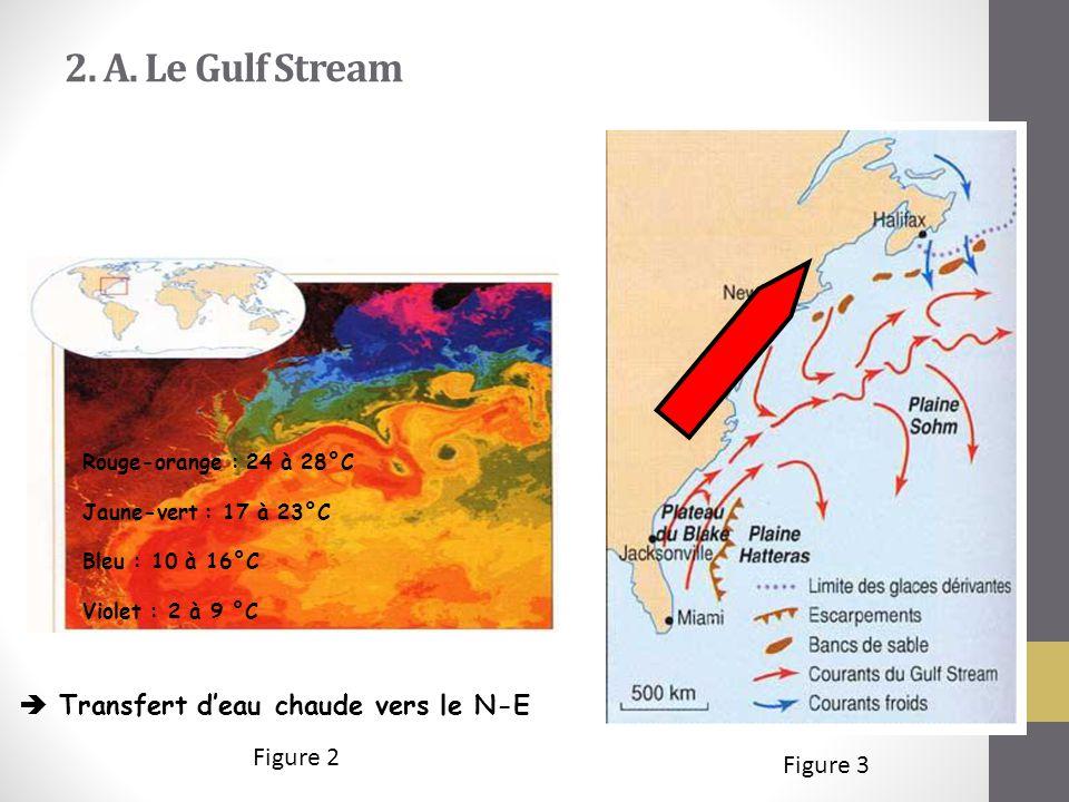 2. A. Le Gulf Stream  Transfert d'eau chaude vers le N-E Figure 2