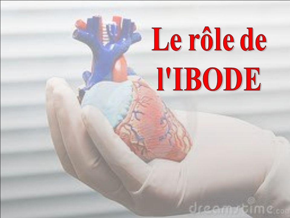 Le rôle de l IBODE