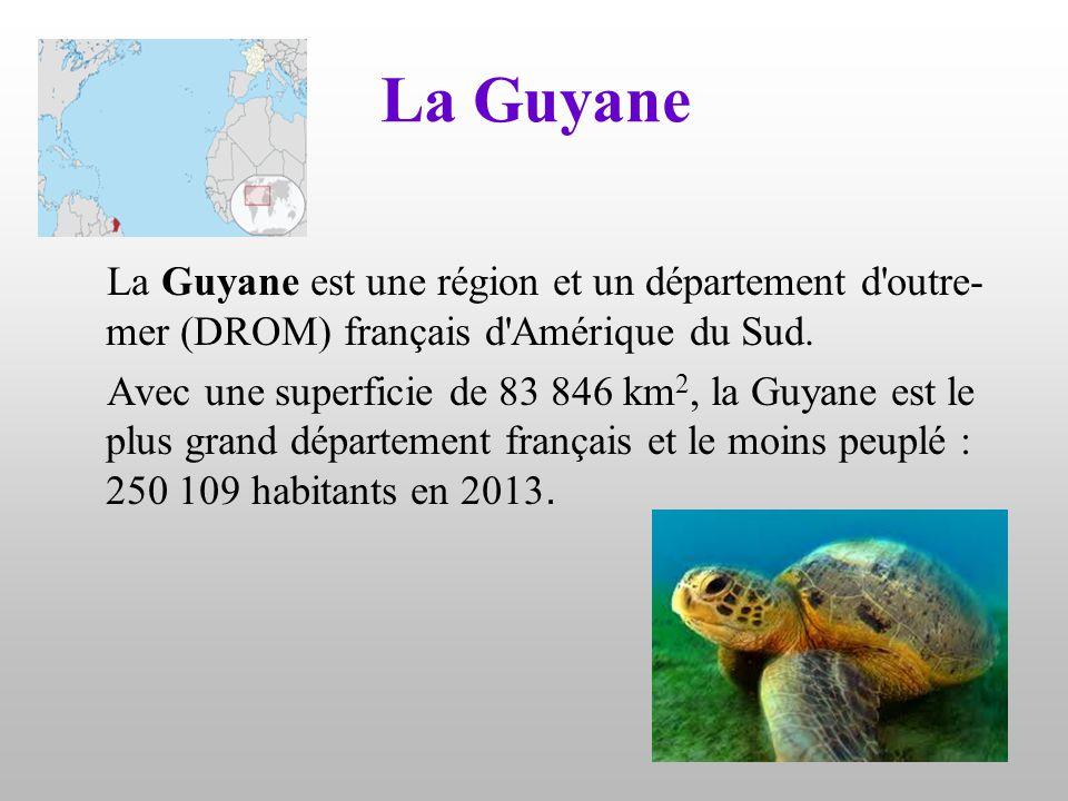 La Guyane La Guyane est une région et un département d outre-mer (DROM) français d Amérique du Sud.