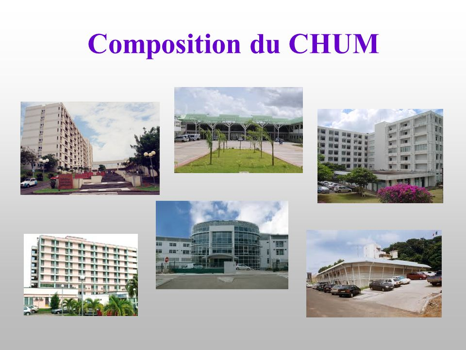 Composition du CHUM