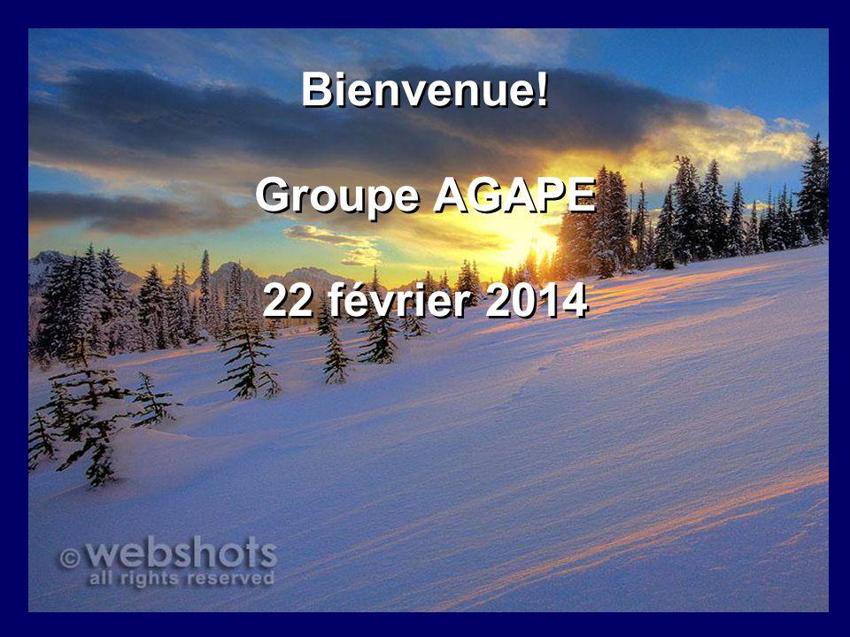 Bienvenue! Groupe AGAPE 22 février 2014