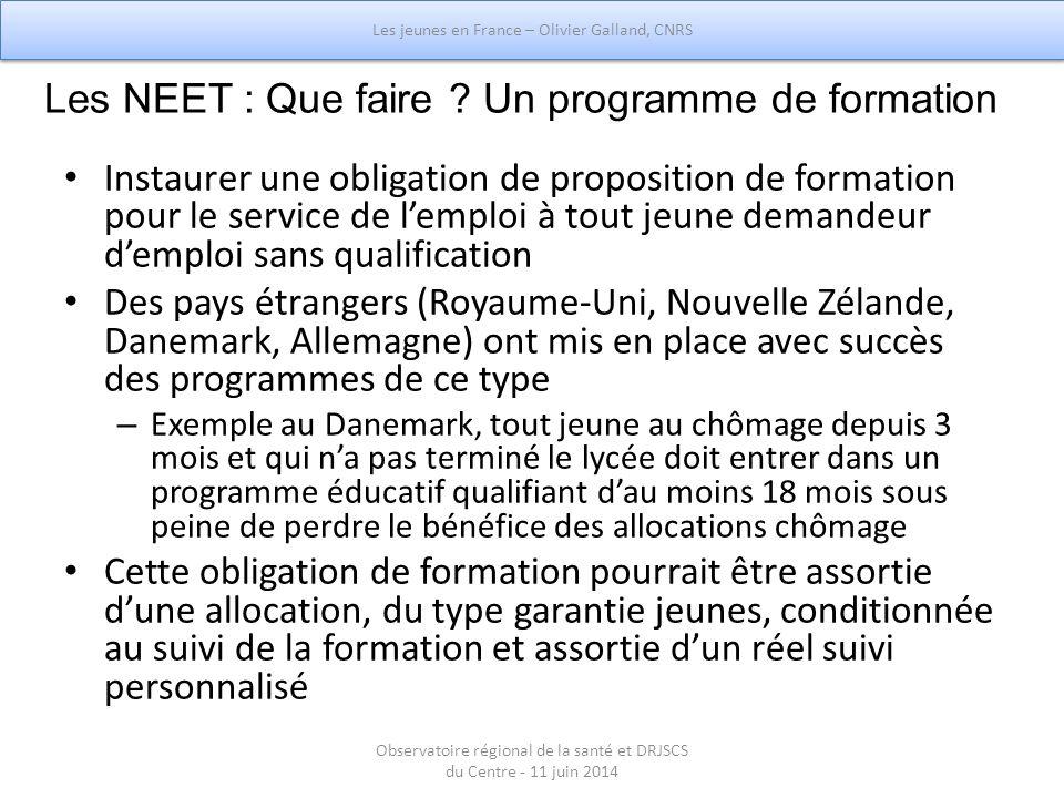 Les NEET : Que faire Un programme de formation