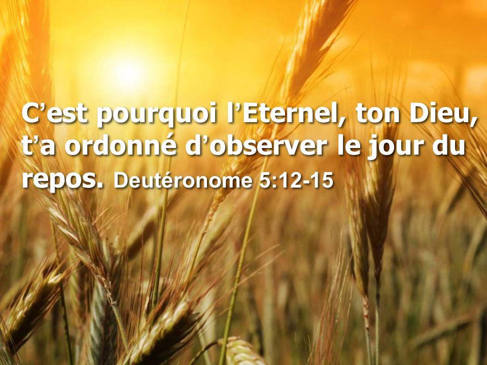 C'est pourquoi l'Eternel, ton Dieu, t'a ordonné d'observer le jour du repos. Deutéronome 5:12-15