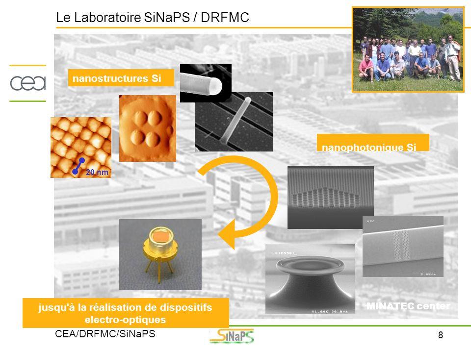 Le Laboratoire SiNaPS / DRFMC