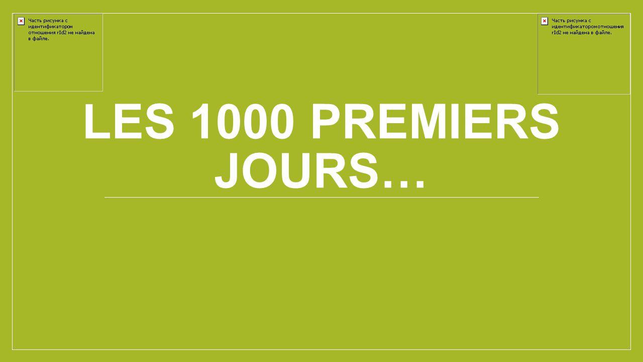 LES 1000 PREMIERS JOURS…