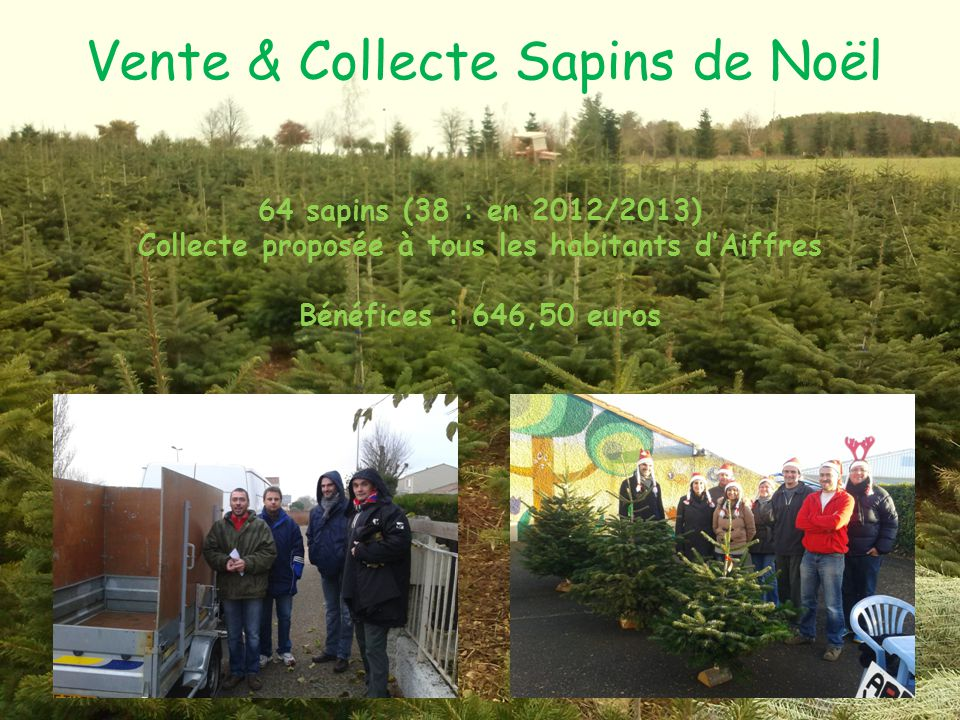 Vente & Collecte Sapins de Noël