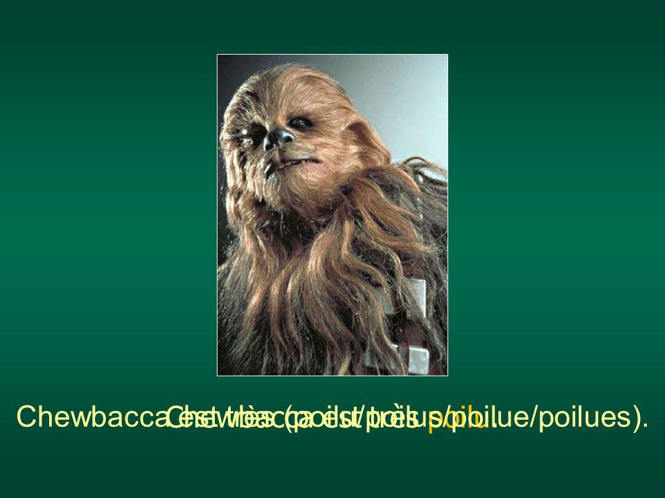 Chewbacca est très (poilu/poilus/poilue/poilues).