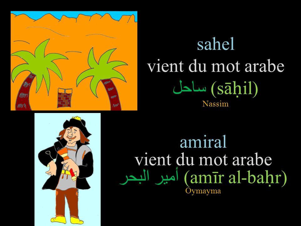 sahel vient du mot arabe ساحل (sāḥil) Nassim
