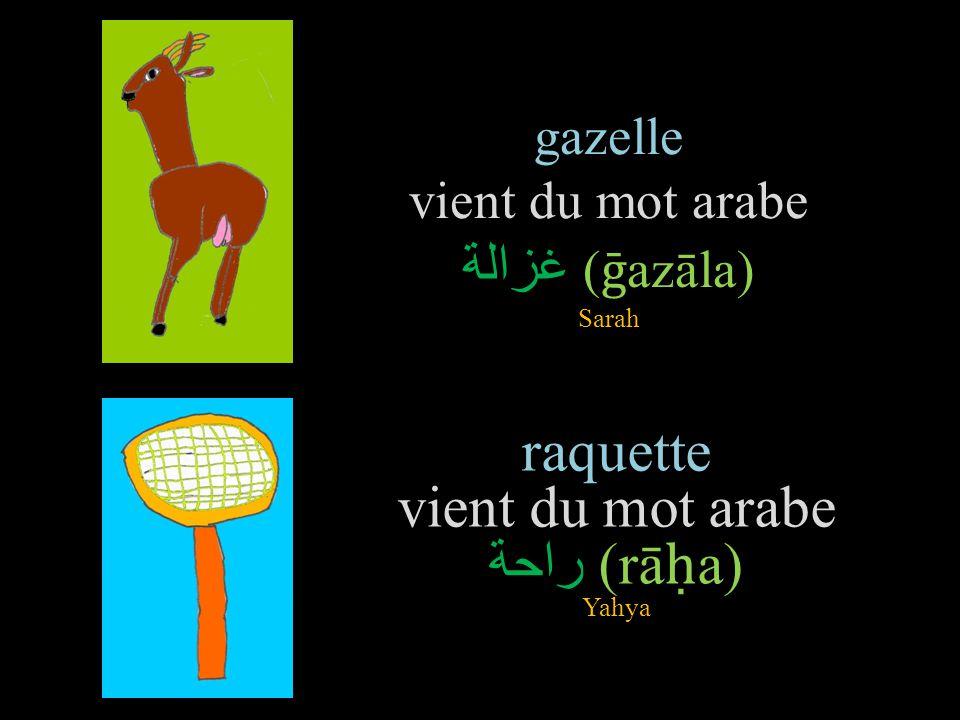 gazelle vient du mot arabe غزالة (ḡazāla) Sarah