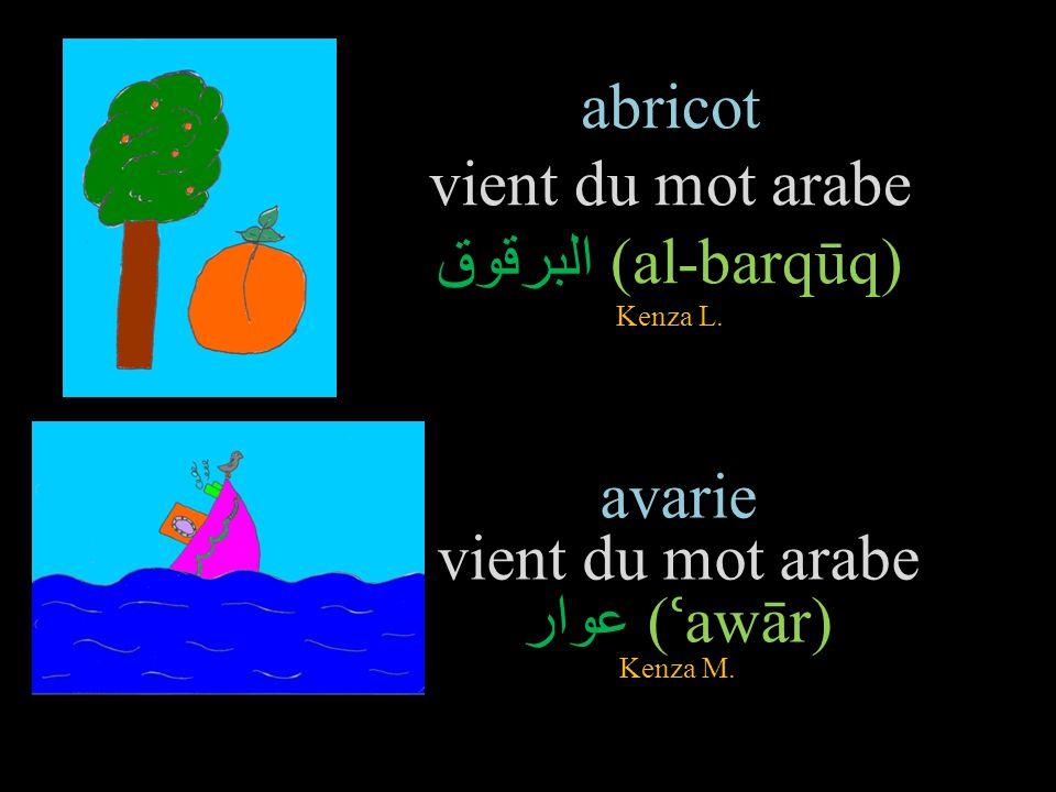 abricot vient du mot arabe البرقوق (al-barqūq) Kenza L.