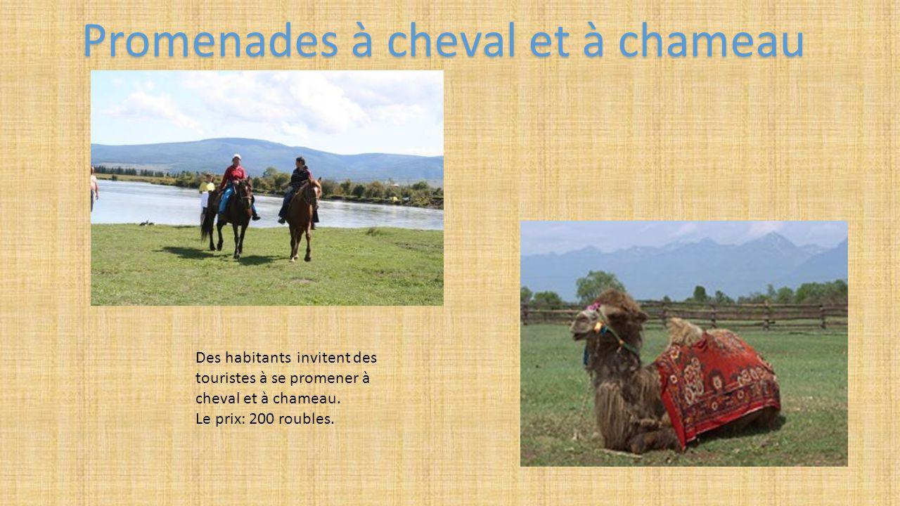 Promenades à cheval et à chameau