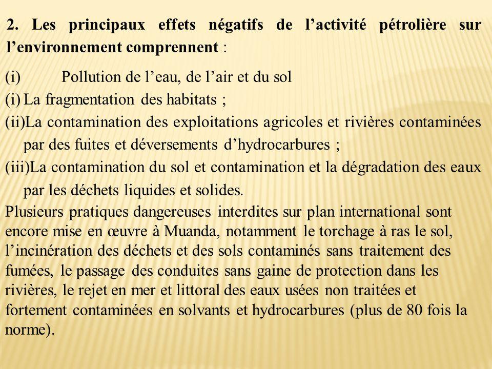 2. Les principaux effets négatifs de l'activité pétrolière sur l'environnement comprennent :