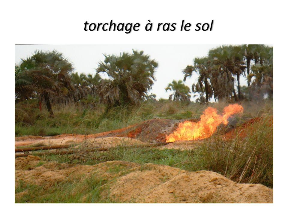 torchage à ras le sol