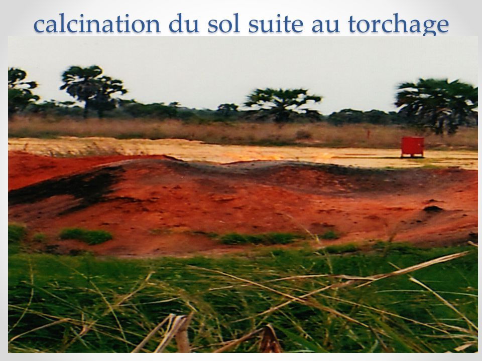 calcination du sol suite au torchage
