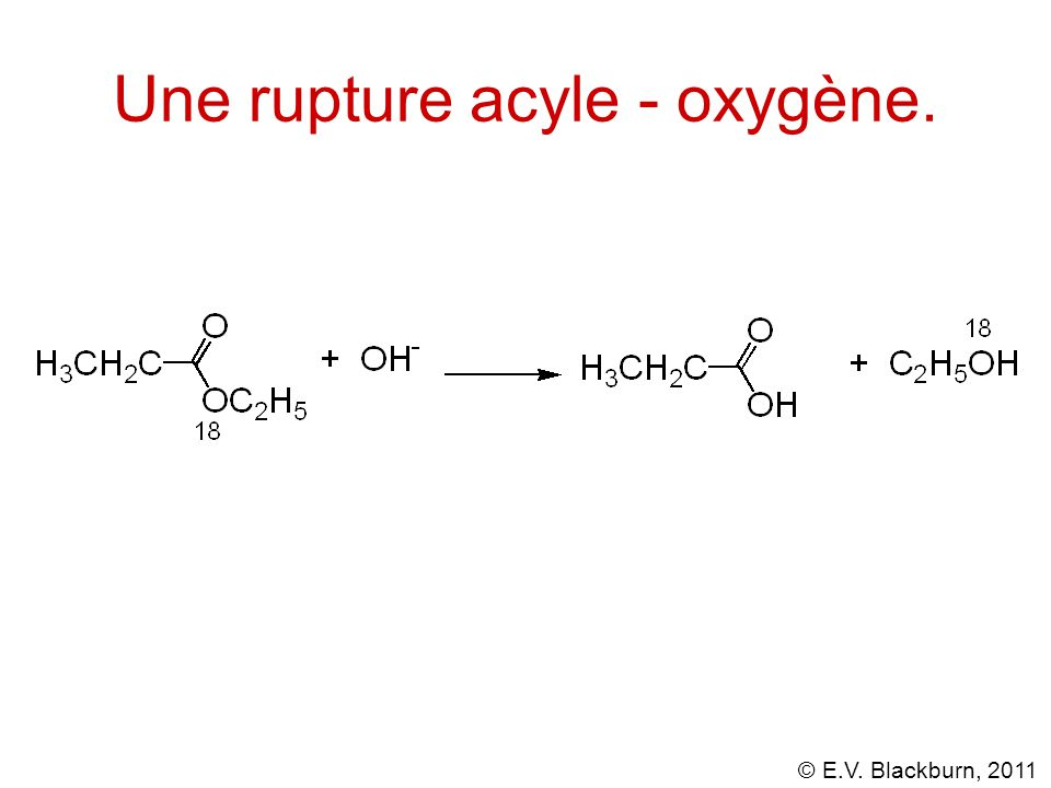 Une rupture acyle - oxygène.