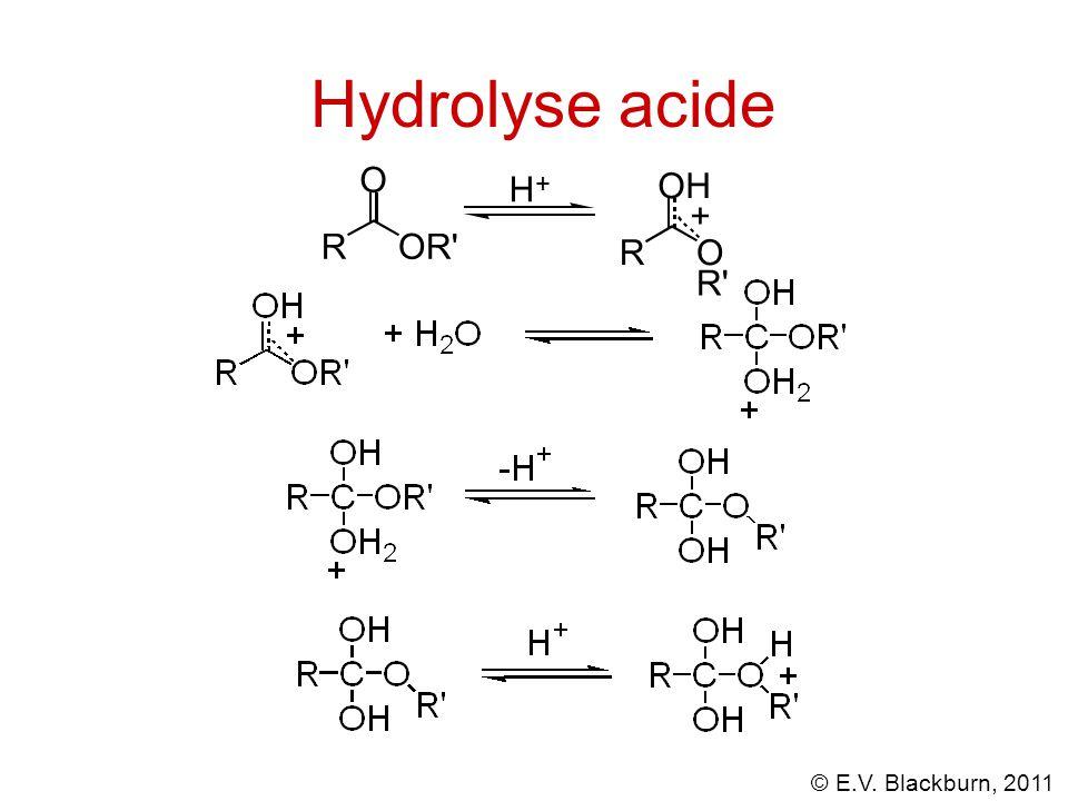 Hydrolyse acide O + H OH + R OR R O R
