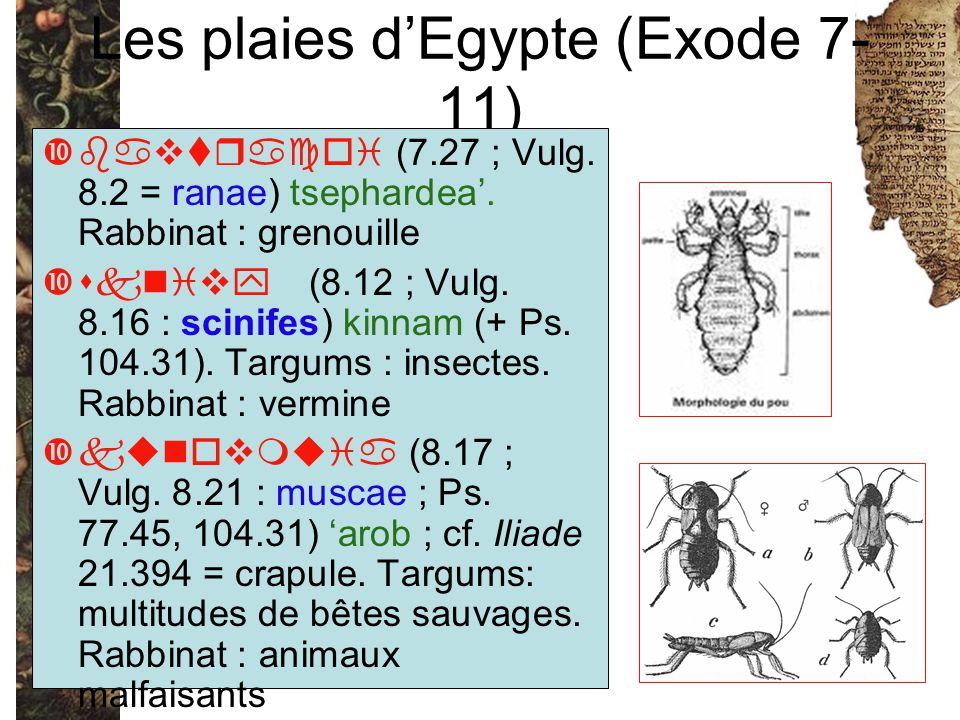 Les plaies d'Egypte (Exode 7-11)
