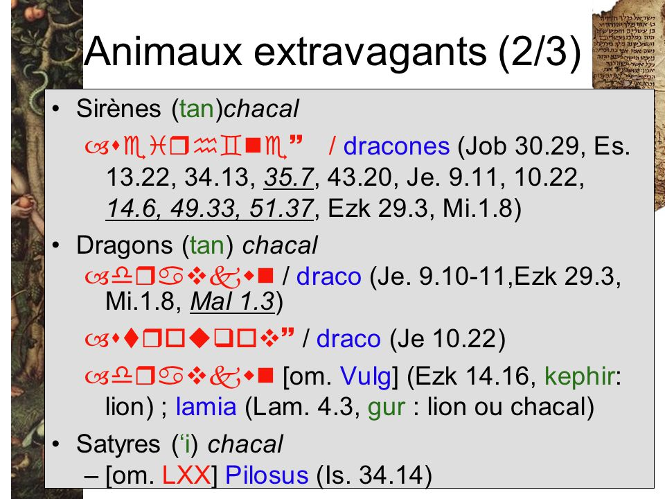 Animaux extravagants (2/3)
