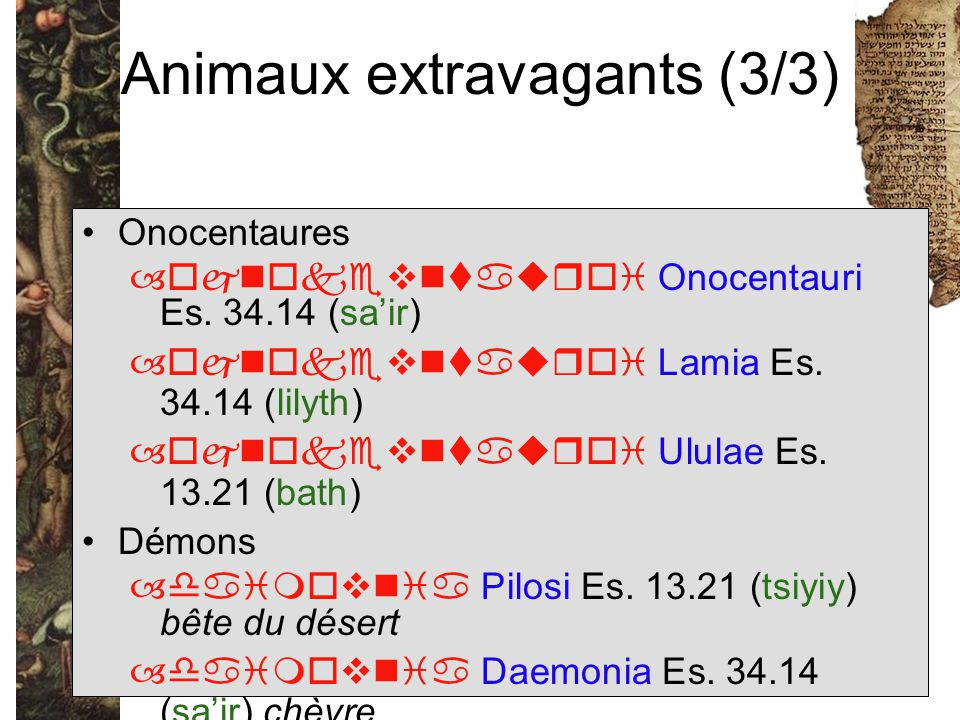 Animaux extravagants (3/3)