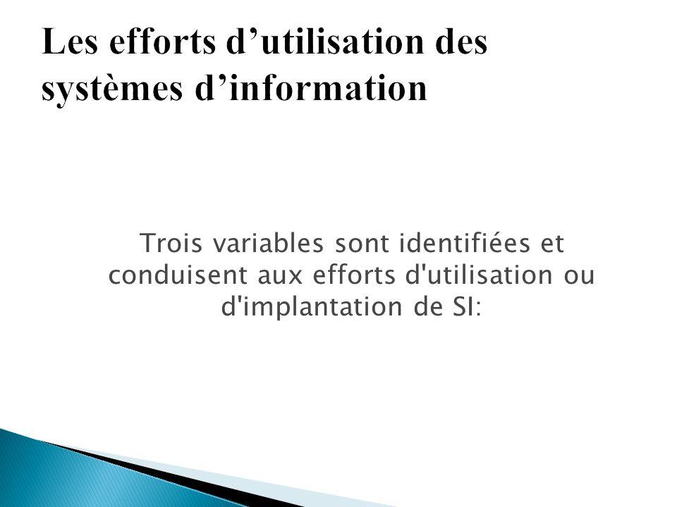 Les efforts d'utilisation des systèmes d'information