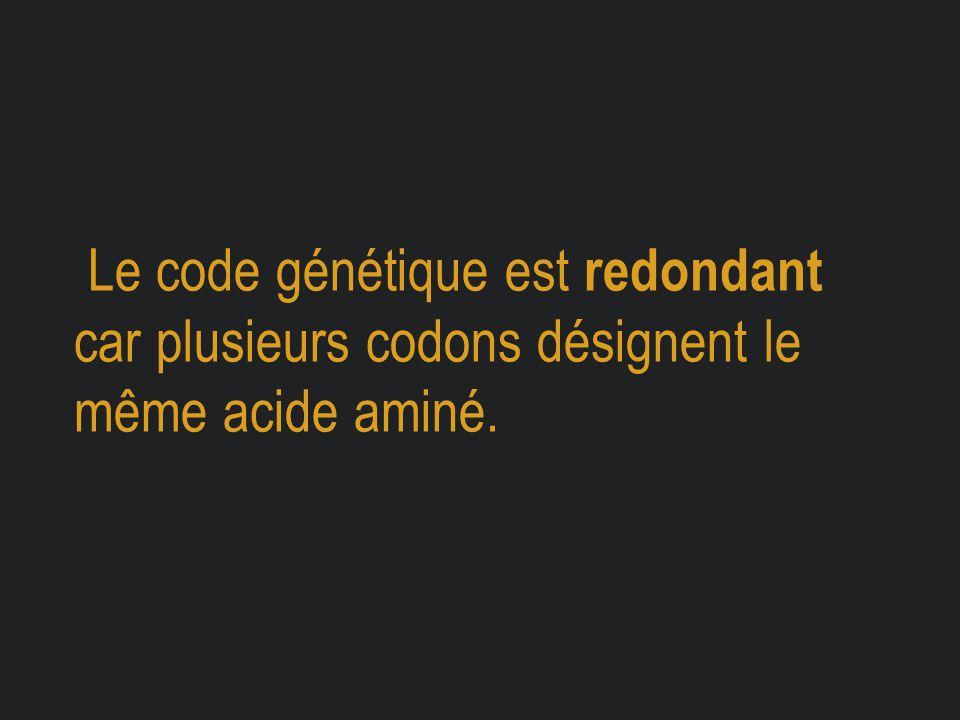 Le code génétique est redondant car plusieurs codons désignent le même acide aminé.