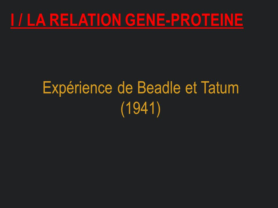 I / la relation gene-proteine