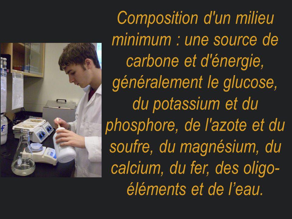 Composition d un milieu minimum : une source de carbone et d énergie, généralement le glucose, du potassium et du phosphore, de l azote et du soufre, du magnésium, du calcium, du fer, des oligo- éléments et de l'eau.