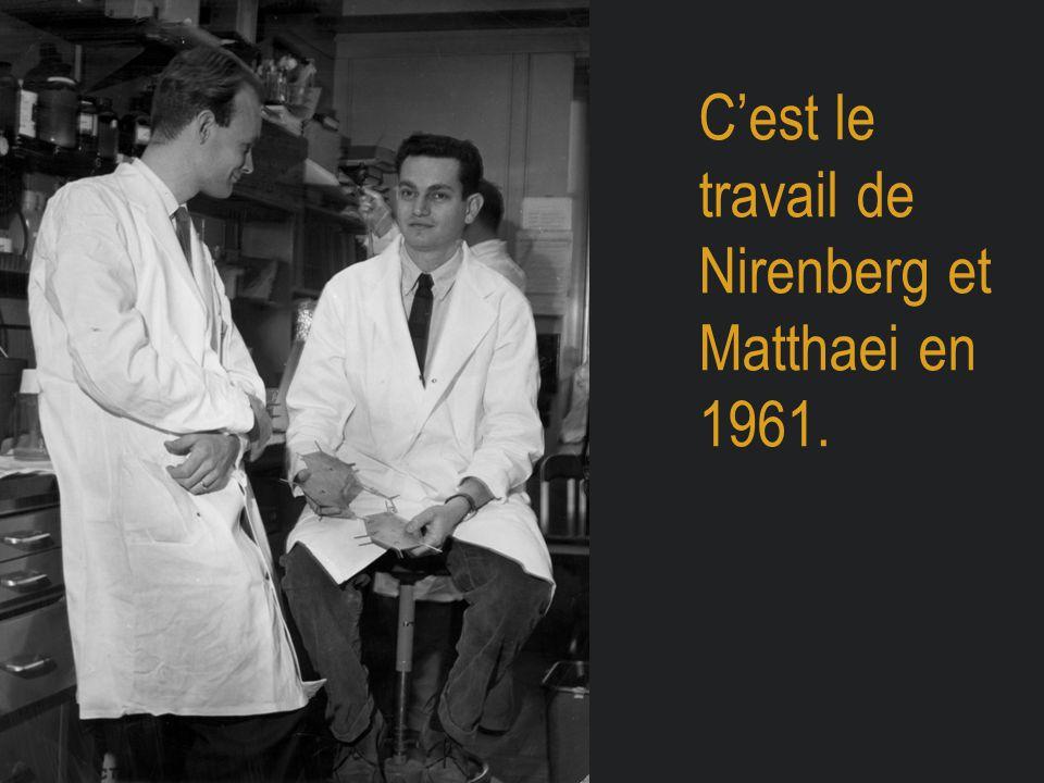 C'est le travail de Nirenberg et Matthaei en 1961.