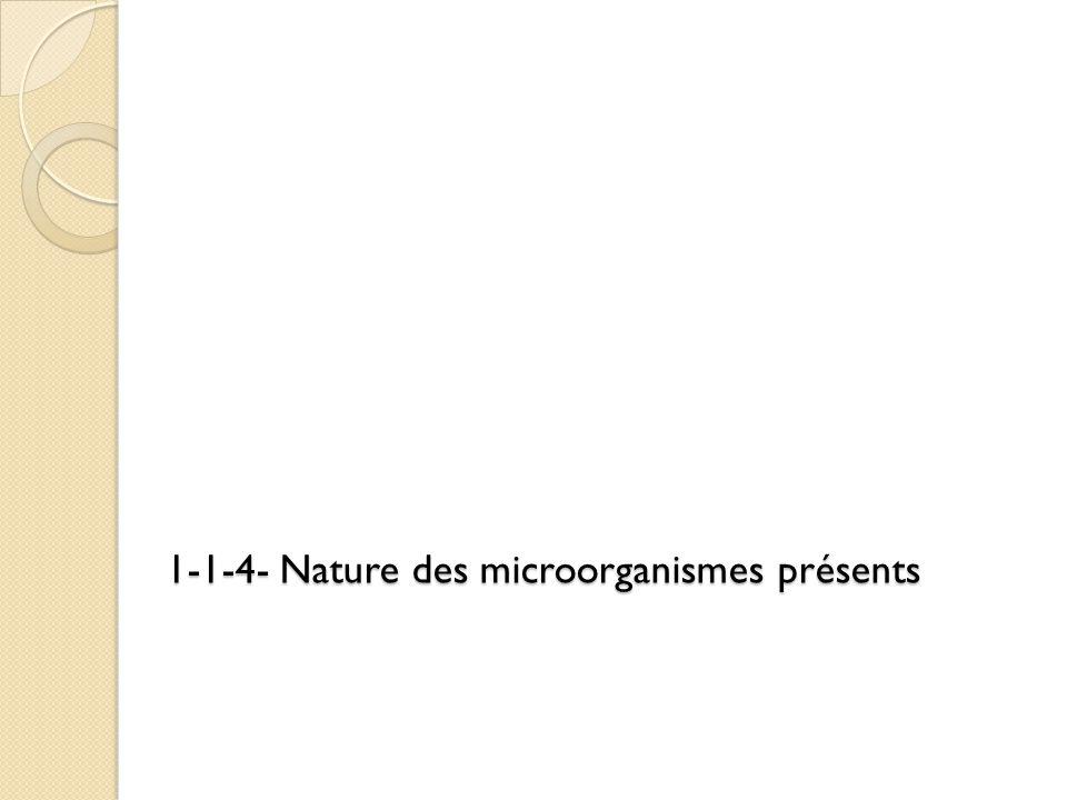 1-1-4- Nature des microorganismes présents