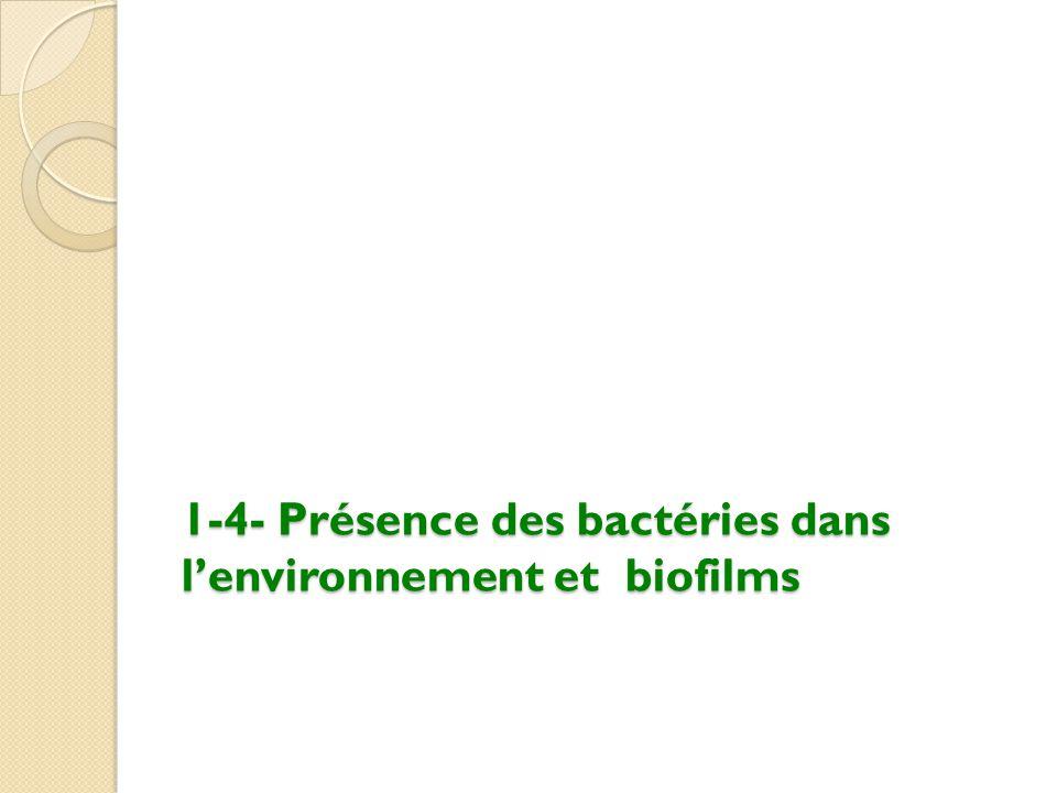 1-4- Présence des bactéries dans l'environnement et biofilms