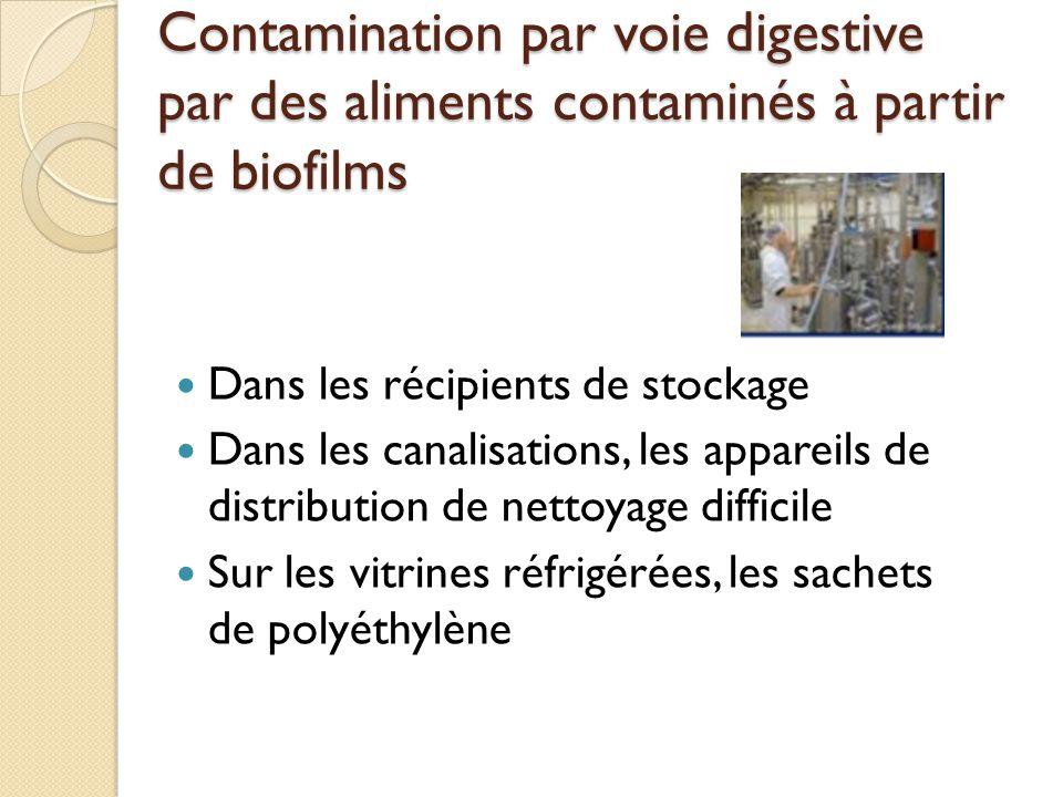 Contamination par voie digestive par des aliments contaminés à partir de biofilms