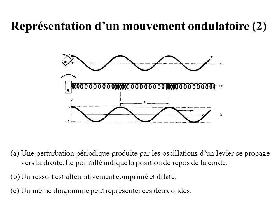 Représentation d'un mouvement ondulatoire (2)