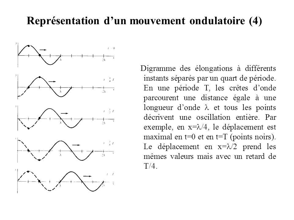 Représentation d'un mouvement ondulatoire (4)