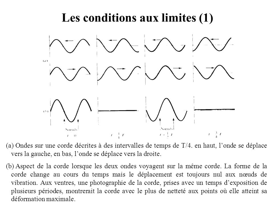 Les conditions aux limites (1)