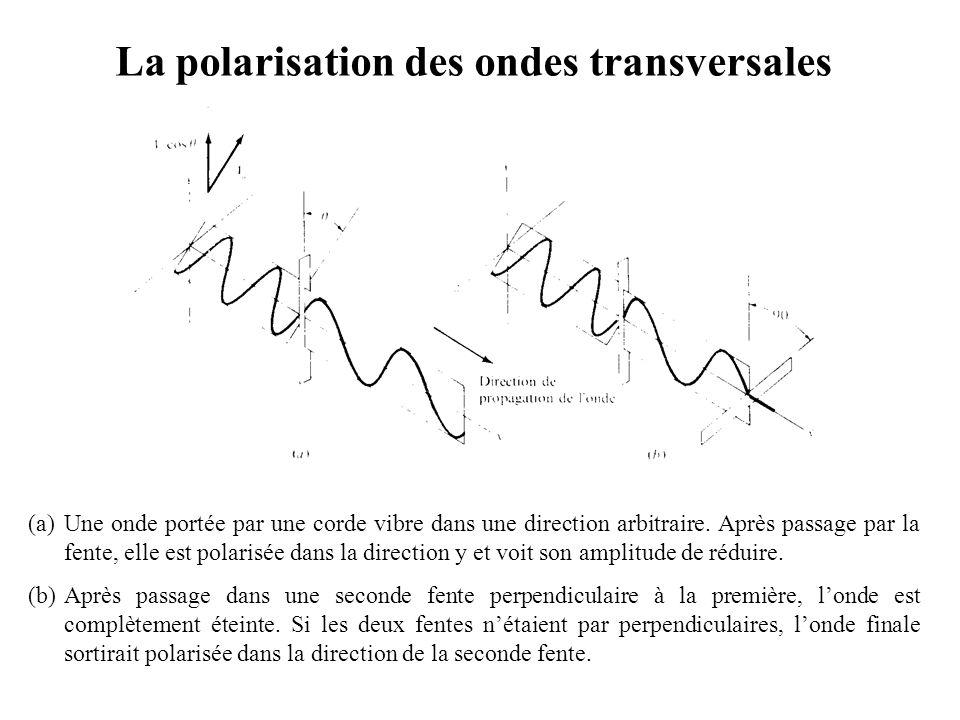 La polarisation des ondes transversales