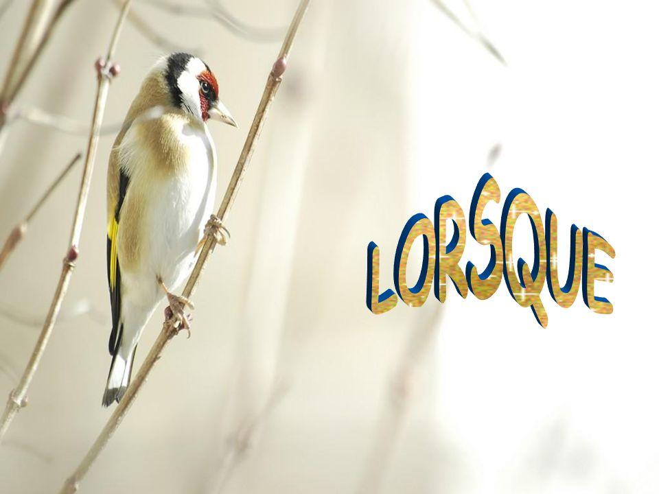 LORSQUE