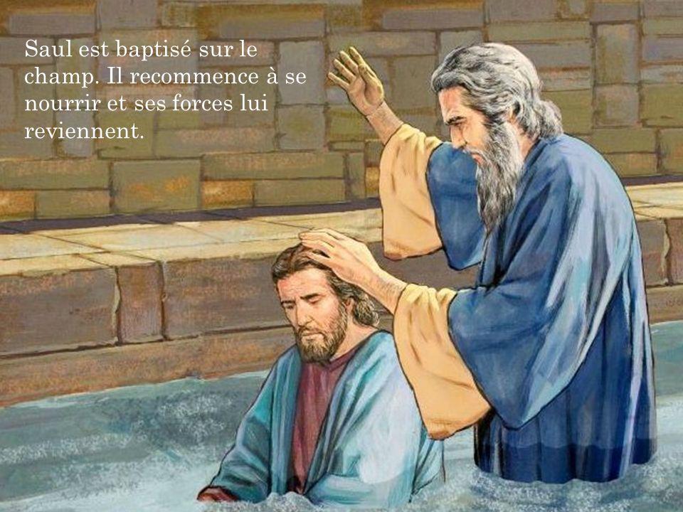 Saul est baptisé sur le champ