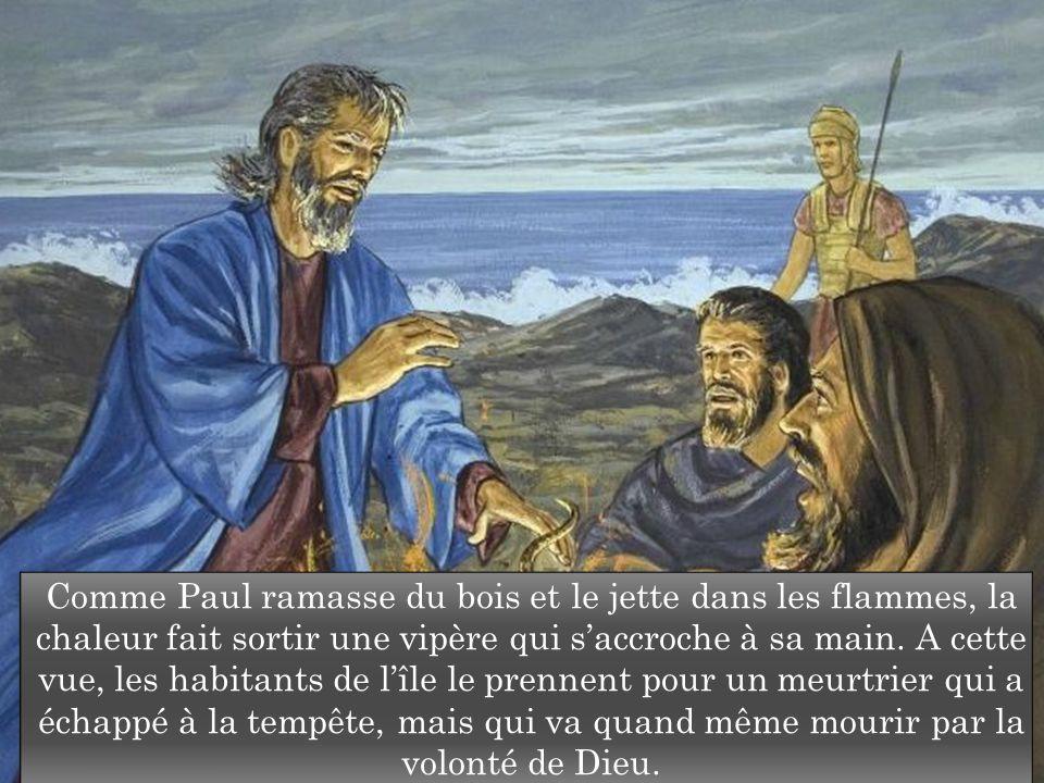Comme Paul ramasse du bois et le jette dans les flammes, la chaleur fait sortir une vipère qui s'accroche à sa main.