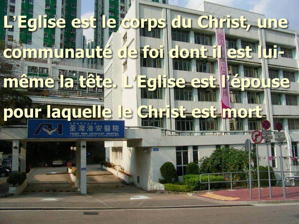 L'Eglise est le corps du Christ, une