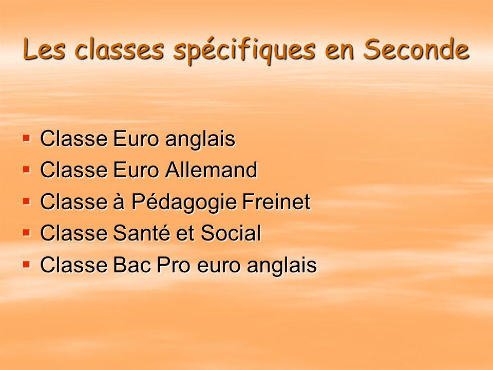 Les classes spécifiques en Seconde