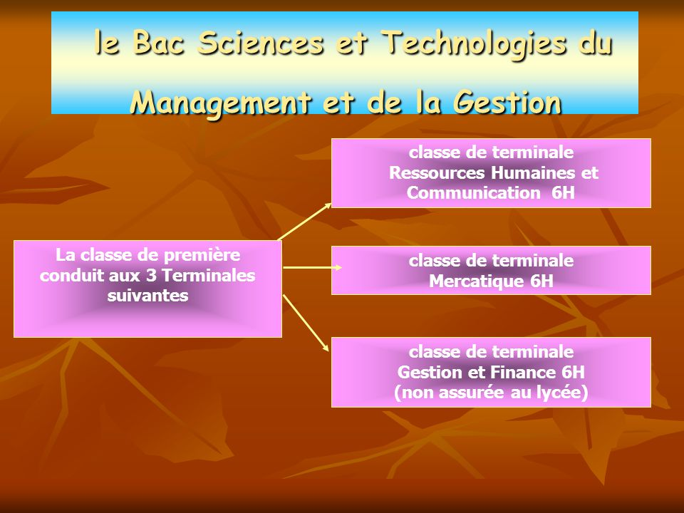 le Bac Sciences et Technologies du Management et de la Gestion