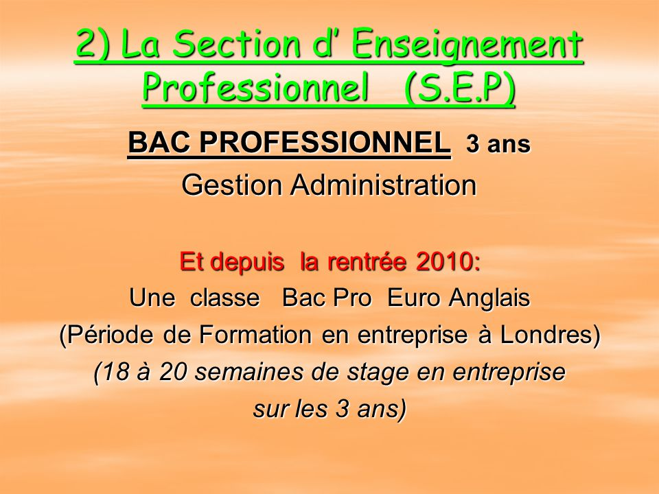 2) La Section d' Enseignement Professionnel (S.E.P)