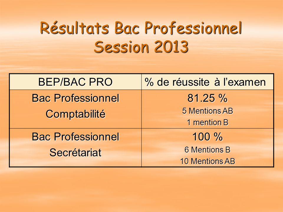 Résultats Bac Professionnel Session 2013