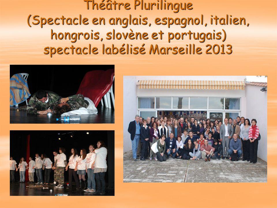 Théâtre Plurilingue (Spectacle en anglais, espagnol, italien, hongrois, slovène et portugais) spectacle labélisé Marseille 2013
