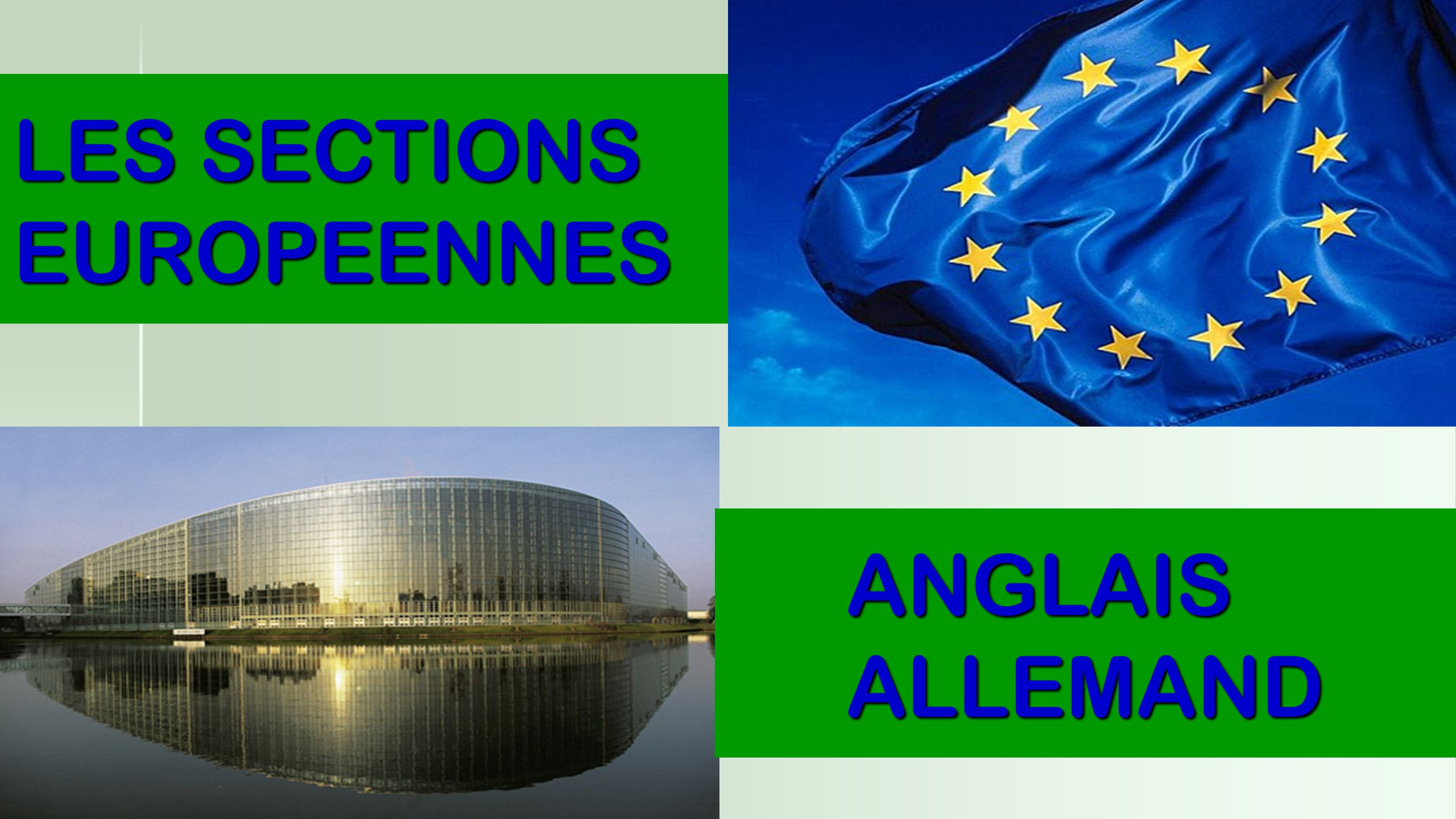 LES SECTIONS EUROPEENNES