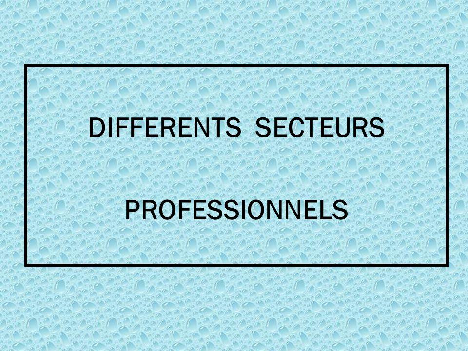 DIFFERENTS SECTEURS PROFESSIONNELS