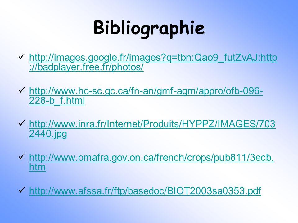 Bibliographie http://images.google.fr/images q=tbn:Qao9_futZvAJ:http://badplayer.free.fr/photos/